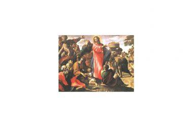 Riflessione al Vangelo di Domenica 25 Luglio 2021 a cura di Don Franco Galeone