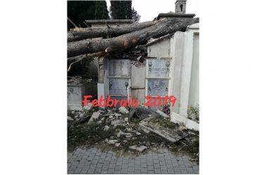 Vicovaro, crolli al cimitero Italia dei Diritti chiede le dimissioni del sindaco