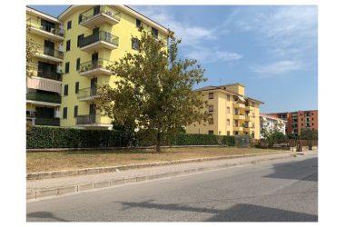 """Pulizia """"elettorale"""" a  San Donato, Belfiore: """"Non ci cancellano anni di indifferenza"""""""
