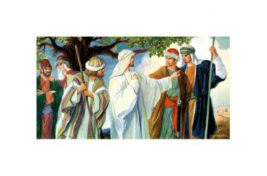 Riflessione al Vangelo di Domenica 17 Ottobre 2021 a cura di Don Franco Galeone